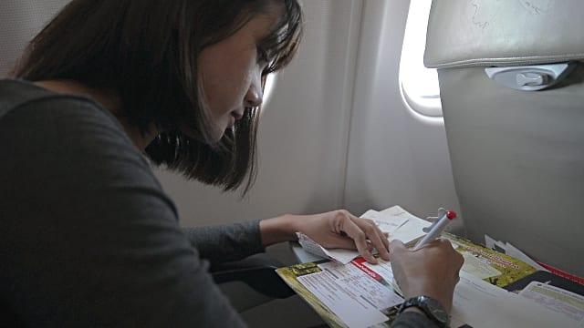 airlines-pen