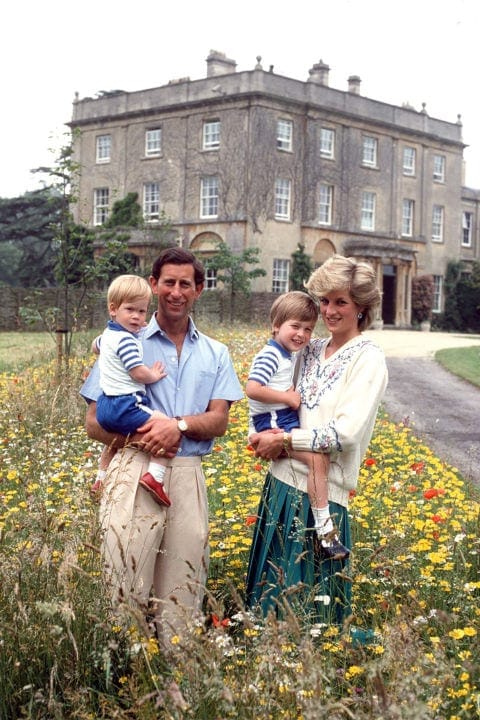 hbz-royal-family-1986-prince-charles-princess-diana-prince-william-harry-gettyimages-52110610