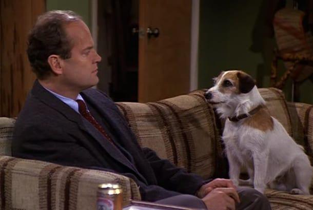 eddie dog