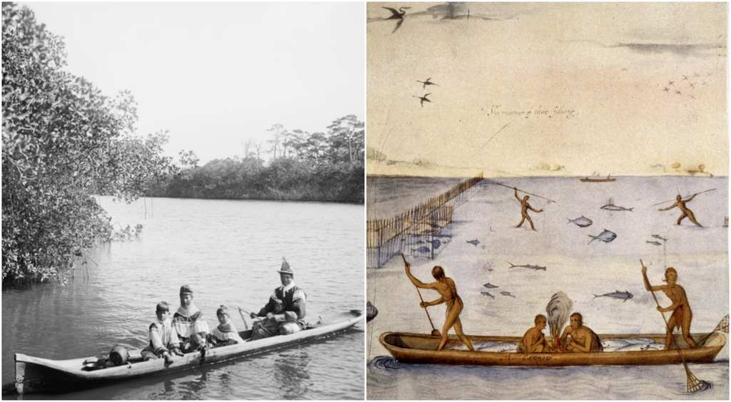 canoe 29