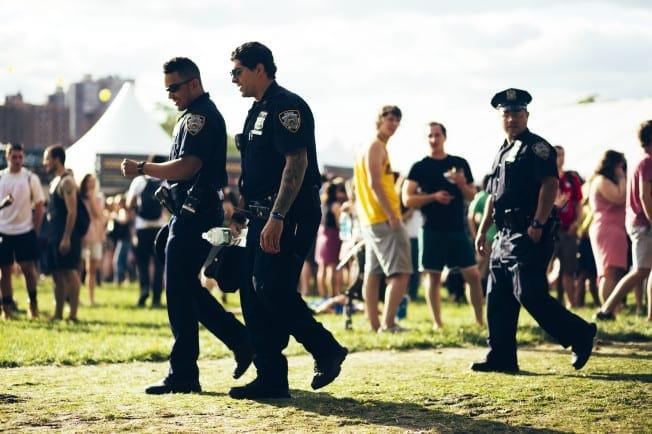 The-cops-at-Govs-Ball-2014-652x434