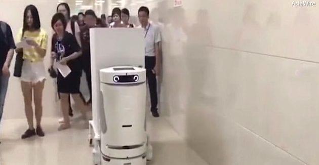 bots-1