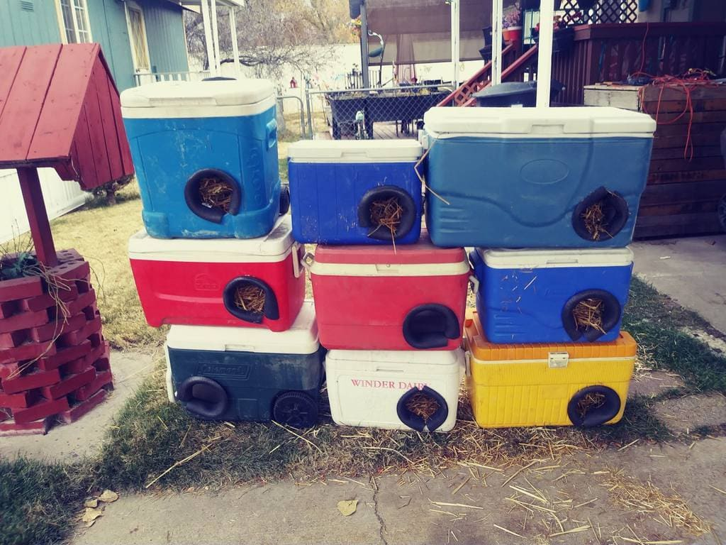 Man Recycles Old Coolers