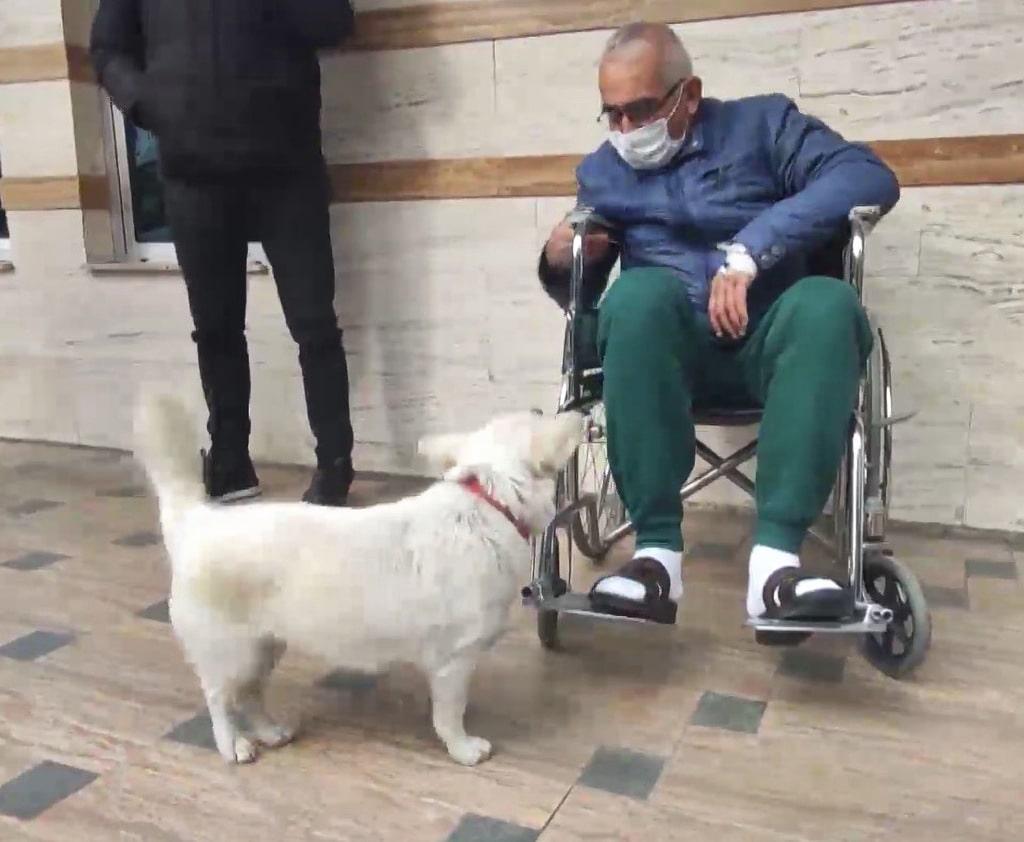 Dog Boncuk and her owner Şentürk